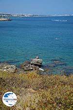 GriechenlandWeb.de Kalithea Rhodos - Rhodos Dodekanes - Foto 604 - Foto GriechenlandWeb.de