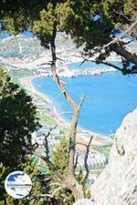GriechenlandWeb.de Kolymbia Rhodos - Rhodos Dodekanes - Foto 682 - Foto GriechenlandWeb.de