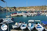 GriechenlandWeb.de Kolymbia Rhodos - Rhodos Dodekanes - Foto 701 - Foto GriechenlandWeb.de