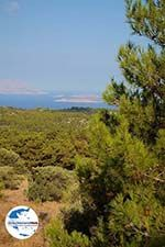 GriechenlandWeb.de Kritinia Rhodos - Foto GriechenlandWeb.de