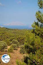 GriechenlandWeb.de Kritinia Rhodos - Rhodos Dodekanes - Foto 750 - Foto GriechenlandWeb.de