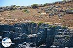GriechenlandWeb.de Lindos Rhodos - Rhodos Dodekanes - Foto 914 - Foto GriechenlandWeb.de
