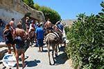 GriechenlandWeb.de Lindos Rhodos - Rhodos Dodekanes - Foto 952 - Foto GriechenlandWeb.de