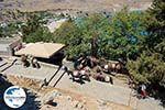 GriechenlandWeb.de Lindos Rhodos - Rhodos Dodekanes - Foto 1028 - Foto GriechenlandWeb.de