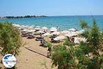 GriechenlandWeb.de Pefkos Rhodos - Rhodos Dodekanes - Foto 1164 - Foto GriechenlandWeb.de
