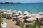 GriechenlandWeb.de Pefkos Rhodos - Rhodos Dodekanes - Foto 1165 - Foto GriechenlandWeb.de