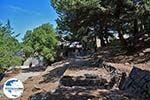 GriechenlandWeb.de Profitis Ilias Rhodos - Rhodos Dodekanes - Foto 1254 - Foto GriechenlandWeb.de