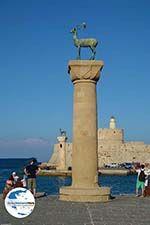 GriechenlandWeb Rhodos Stadt Rhodos - Rhodos Dodekanes - Foto 1523 - Foto GriechenlandWeb.de