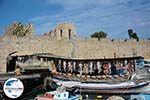 Rhodos Stadt Rhodos - Rhodos Dodekanes - Foto 1537 - Foto GriechenlandWeb.de