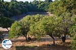 Rhodos Stadt Rhodos - Rhodos Dodekanes - Foto 1569 - Foto GriechenlandWeb.de