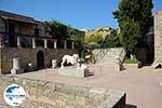 GriechenlandWeb.de Rhodos Stadt Rhodos - Rhodos Dodekanes - Foto 1652 - Foto GriechenlandWeb.de
