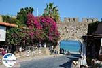 GriechenlandWeb.de Rhodos Stadt Rhodos - Rhodos Dodekanes - Foto 1751 - Foto GriechenlandWeb.de
