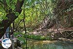 GriechenlandWeb.de Vlindervallei Rhodos - Rhodos Dodekanes - Foto 1832 - Foto GriechenlandWeb.de