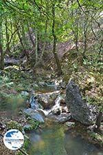 GriechenlandWeb.de Vlindervallei Rhodos - Rhodos Dodekanes - Foto 1844 - Foto GriechenlandWeb.de
