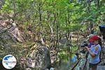 GriechenlandWeb Vlindervallei Rhodos - Rhodos Dodekanes - Foto 1847 - Foto GriechenlandWeb.de