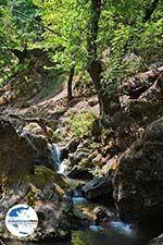 GriechenlandWeb.de Vlindervallei Rhodos - Rhodos Dodekanes - Foto 1853 - Foto GriechenlandWeb.de