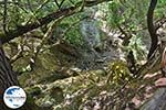 GriechenlandWeb.de Vlindervallei Rhodos - Rhodos Dodekanes - Foto 1863 - Foto GriechenlandWeb.de