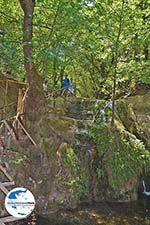 GriechenlandWeb.de Vlindervallei Rhodos - Rhodos Dodekanes - Foto 1884 - Foto GriechenlandWeb.de