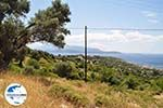 GriechenlandWeb Landschap Pythagorion - Insel Samos - Foto GriechenlandWeb.de