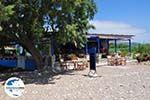 GriechenlandWeb.de Taverna aan het Strandt van Heraion (Ireon) - Insel Samos - Foto GriechenlandWeb.de