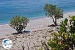 GriechenlandWeb Een verlaten kiezelstrand Kampos (Votsalakia)  - Insel Samos - Foto GriechenlandWeb.de