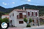 GriechenlandWeb.de Mooie gebouwen aan de kust Agios Konstandinos - Insel Samos - Foto GriechenlandWeb.de