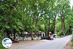 GriechenlandWeb.de Taverna aan de Vallei der Nachtegalen Agios Konstandinos - Insel Samos - Foto GriechenlandWeb.de