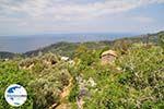 Nabij Manolates - Insel Samos - Foto GriechenlandWeb.de