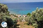 GriechenlandWeb Tsamadou Kokkari - Insel Samos - Foto GriechenlandWeb.de