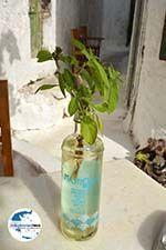 GriechenlandWeb.de Emporio Santorin | Kykladen Griechenland | Foto 55 - Foto GriechenlandWeb.de