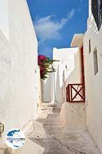 Emporio Santorin | Kykladen Griechenland | Foto 62 - Foto GriechenlandWeb.de