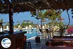 GriechenlandWeb Camping Fira Santorin | Kykladen Griechenland | Foto 2 - Foto GriechenlandWeb.de