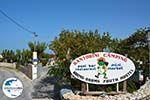 GriechenlandWeb.de Camping Fira Santorin | Kykladen Griechenland | Foto 7 - Foto GriechenlandWeb.de