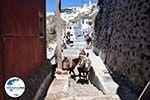 GriechenlandWeb.de Fira Santorin (Thira) - Foto 66 - Foto GriechenlandWeb.de