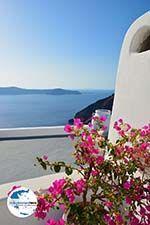 GriechenlandWeb.de Firostefani Santorin | Kykladen Griechenland  | Foto 0056 - Foto GriechenlandWeb.de
