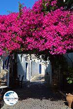 GriechenlandWeb.de Megalochori Santorin | Kykladen Griechenland | Foto 12 - Foto GriechenlandWeb.de