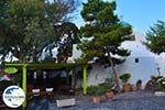 GriechenlandWeb.de Megalochori Santorin   Kykladen Griechenland   Foto 51 - Foto GriechenlandWeb.de