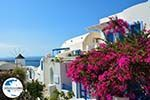 GriechenlandWeb.de Oia Santorin | Kykladen Griechenland | Foto 1192 - Foto GriechenlandWeb.de