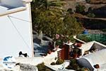 Pyrgos Santorin | Kykladen Griechenland | Foto 107 - Foto GriechenlandWeb.de