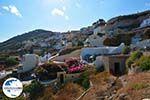 Pyrgos Santorin   Kykladen Griechenland   Foto 116 - Foto GriechenlandWeb.de