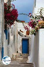 GriechenlandWeb.de Pyrgos Santorin | Kykladen Griechenland | Foto 145 - Foto GriechenlandWeb.de