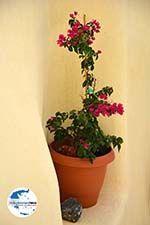 GriechenlandWeb.de Pyrgos Santorin | Kykladen Griechenland | Foto 166 - Foto GriechenlandWeb.de
