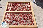 GriechenlandWeb.de Red Beach Akrotiri Santorin | Kykladen Griechenland | GriechenlandWeb.de foto 7 - Foto GriechenlandWeb.de
