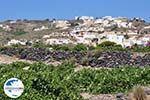 GriechenlandWeb.de Red Beach Akrotiri Santorin | Kykladen Griechenland | GriechenlandWeb.de foto 23 - Foto GriechenlandWeb.de