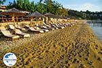 GriechenlandWeb.de Achladies | Skiathos Sporaden | GriechenlandWeb.de foto 12 - Foto GriechenlandWeb.de