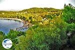 GriechenlandWeb Koukounaries | Skiathos Sporaden | GriechenlandWeb.de foto 2 - Foto GriechenlandWeb.de