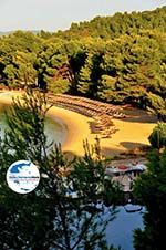 Koukounaries | Skiathos Sporaden | GriechenlandWeb.de foto 13 - Foto GriechenlandWeb.de