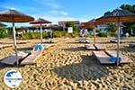 GriechenlandWeb.de Troulos beach | Skiathos Sporaden | GriechenlandWeb.de foto 7 - Foto GriechenlandWeb.de