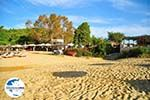 GriechenlandWeb.de Troulos beach | Skiathos Sporaden | GriechenlandWeb.de foto 8 - Foto GriechenlandWeb.de