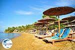 GriechenlandWeb.de Troulos beach | Skiathos Sporaden | GriechenlandWeb.de foto 10 - Foto GriechenlandWeb.de